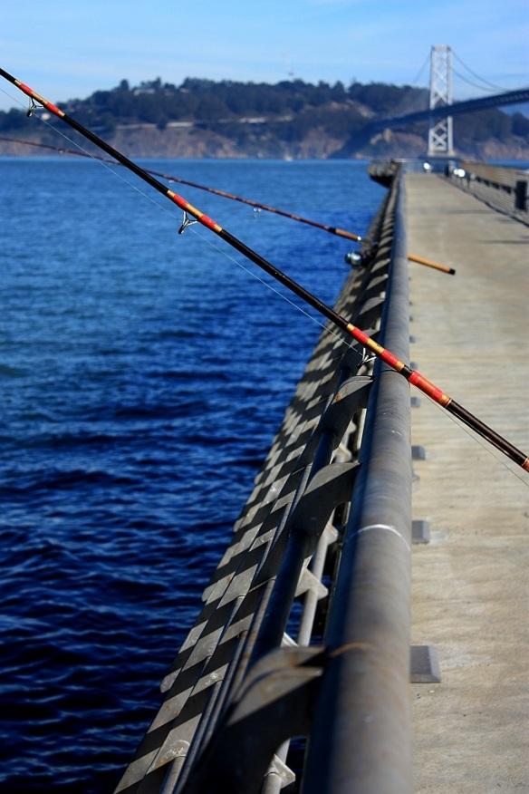 Pier14 Embarcadero SanFrancisco