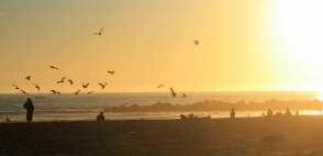 Venice Beach, promenade, Los Angeles, California, USA