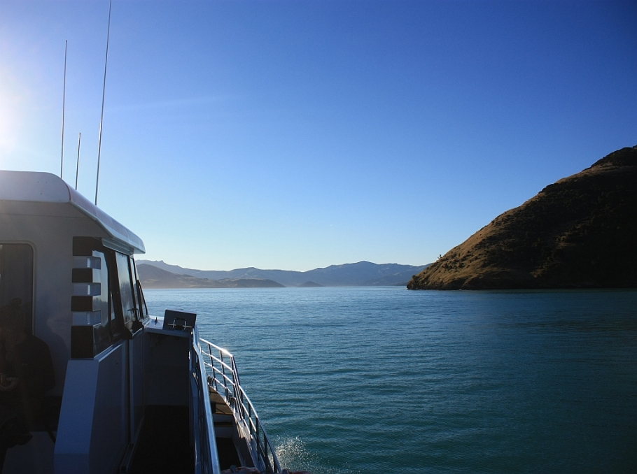 Akaroa harbour, Canterbury, South Island, New Zealand