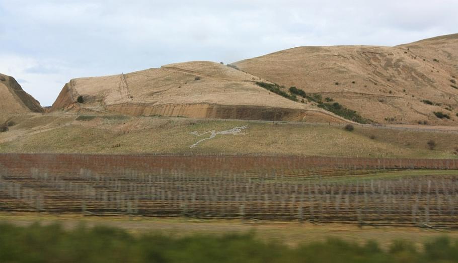 Marlborough region, south of Blenheim, on KiwiRail Coastal Pacific train, Picton to Christchurch, South Island, New Zealand, fotoeins.com