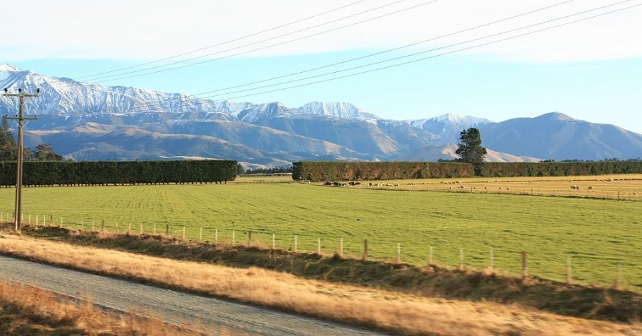 Canterbury region, from TranzAlpine train from Christchurch to Greymouth, fotoeins.com