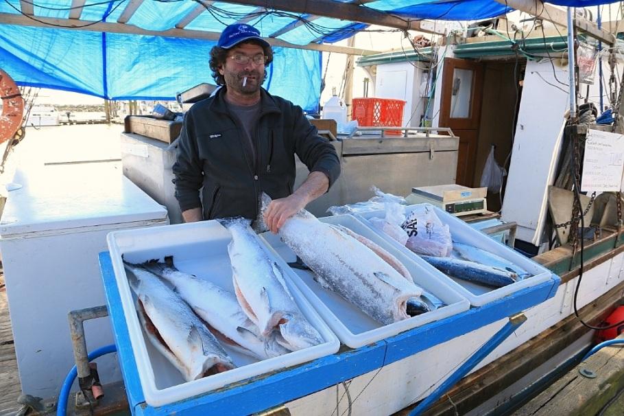 Tuna flash frozen fotoeins fotografie for Flash freeze fish