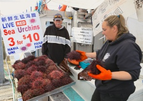 Steveston Fish Market, Steveston Public Fish Sales Float, Steveston Landing, Fisherman's Wharf, Steveston, Richmond, BC, Canada