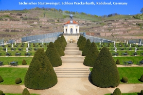 Sächsisches Staatsweingut, Schloss Wackerbarth, Radebeul, Saxony, Germany, fotoeins.com