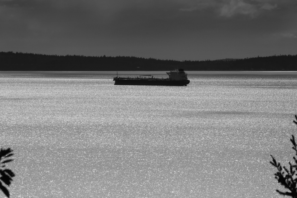 Guemes Island, Samish Bay, Salish Sea, Larrabee State Park, Washington, USA, Pacific Northwest, PNW, fotoeins.com