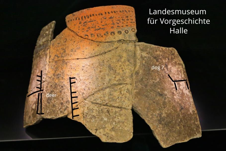 State Museum for Prehistory, Landesmuseum für Vorgeschichte, Halle an der Saale, Halle, Saale river, Saale, Sachsen-Anhalt, Saxony-Anhalt, Cultural Heart of Germany, Germany, fotoeins.com