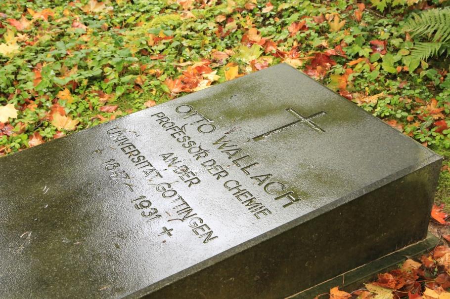 Nobel Prize, Stadtfriedhof, Göttingen, Niedersachsen, Lower Saxony, Germany, fotoeins.com