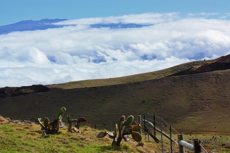 Mauna Kea, telescope, observatory, Kohala, volcano, Big Island, Hawaii, USA, fotoeins.com
