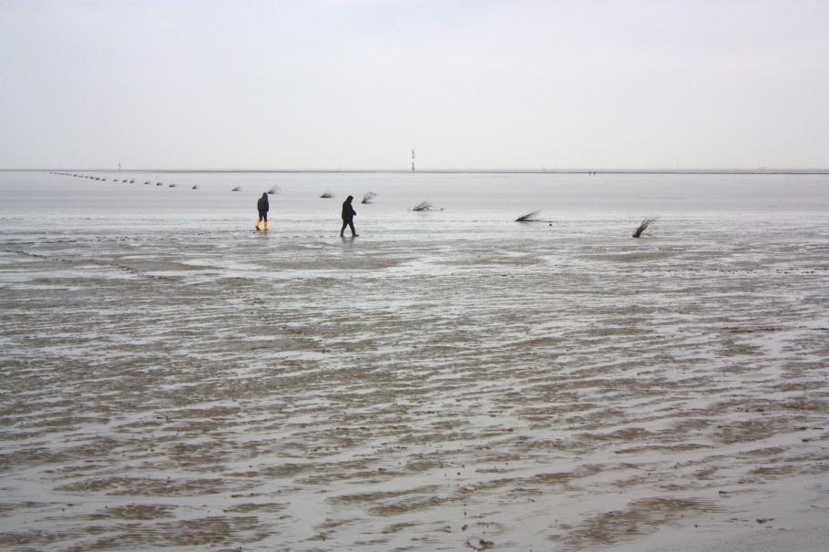 Wattenmeer, Wadden Sea, Cuxhaven, Niedersachsen, Lower Saxony, Germany, Deutschland, Welterbe, Weltnaturerbe