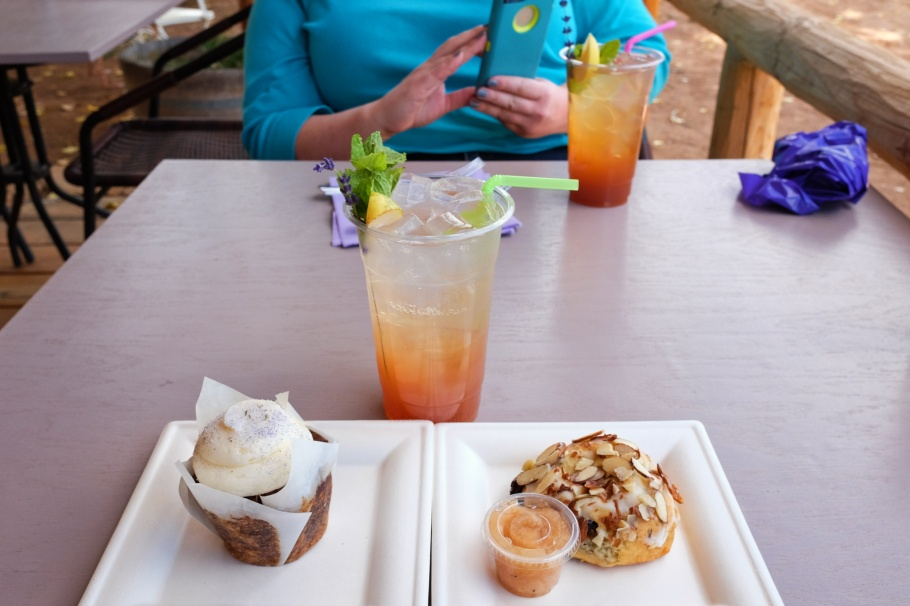 fruit spritzer, carrot cupcake, cherry almond scone, Purple Adobe Lavender Farm, Abiquiu, NM, USA, fotoeins.com