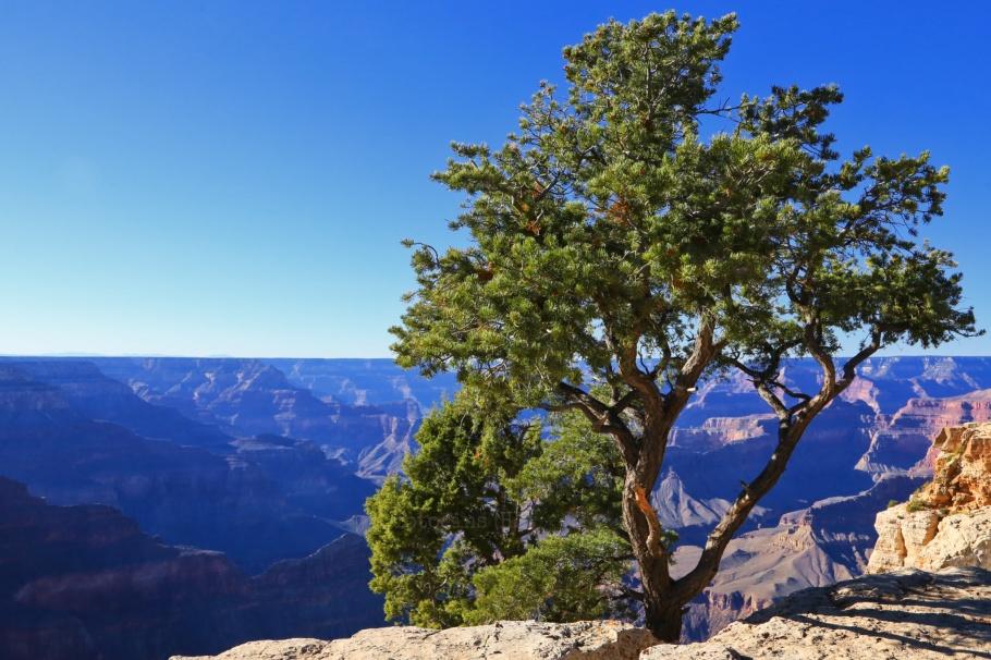 Mojave Point, South Rim, Grand Canyon, Grand Canyon National Park, AZ, fotoeins.com