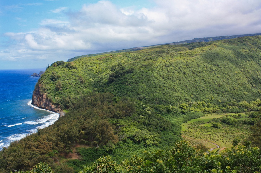 Pololū Valley, Kohala volcano, Pacific Ocean, Big Island, Hawaii, USA, fotoeins.com