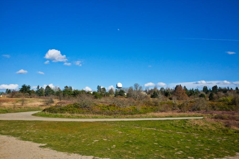 Sandy knoll, Discovery Park, Magnolia, Seattle, WA, USA, fotoeins.com