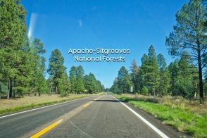 Apache-Sitgreaves National Forests, US 60, AZ 77, Show Low, Arizona, USA, fotoeins.com