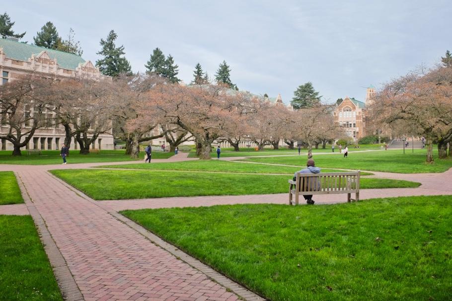 The Quad, University of Washington, Seattle, WA, USA, fotoeins.com