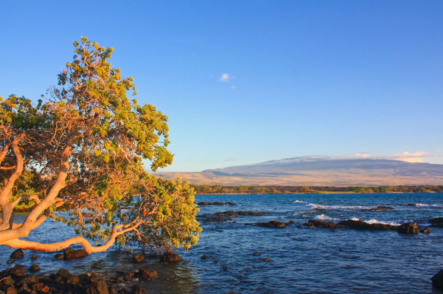 Waikoloa Beach Marriott Resort, Waikoloa Beach, Hualālai, Big Island, Hawaii, USA, fotoeins.com